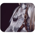 Trivet/Mouse Pad-Grey Horse