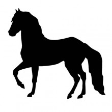 Decal-riding Horse