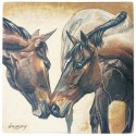 Coaster Set - Horse Kiss