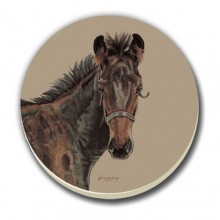 COASTER SET-NEW FOAL