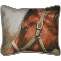 Pillow- Bay Horse